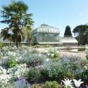Conservatoire et Jardin botaniques de la Ville de Genève - CJB